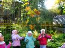 Закружила осень Листья в хороводе. Очень рады мы теплу, Солнечной погоде.