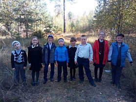 Экскурсия в лес