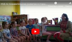 Фрагмент занятия по познавательному развитию. Воспитатель Касаткина Жанна Александровна