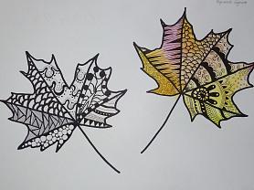 Стилизация природных форм, графика