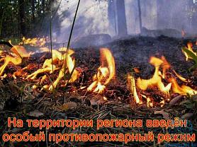 Противопожарный режим на территории Республики Мордовия