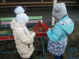 Синичкин день в детском саду