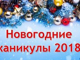 ЗИМНИЕ КАНИКУЛЫ ДЛЯ ОСНОВНЫХ ГРУПП с 28 декабря по 9 января 2018 года.