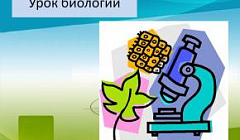 Фрагмент урока биологии в 6А классе. Учитель Молчанова Е. Н.