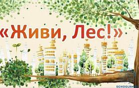 """Акция """"ЖИВИ,ЛЕС"""""""