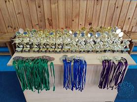 Межрегиональной турнир по вольной борьбе среди юношей, посвященный памяти МСМК по дзюдо В.П.Раздолькина