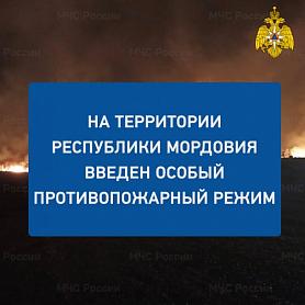 В республике введен особый противопожарный режим