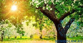 """V Открытый конкурс мультимедийных проектов учащихся ДМШ, ДШИ, ДХШ """"Культура моего народа"""""""