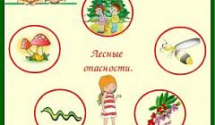"""Слушкина Н.Р. ООД по познавательному развитию """"Опасности в лесу"""""""