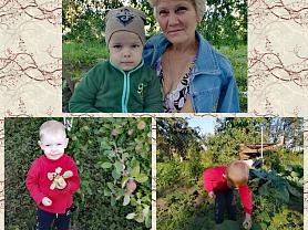 "Онлайн-проект ""Бабушкин огород"""