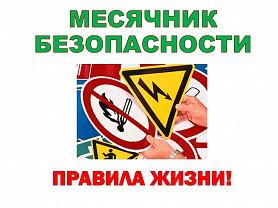Месячник безопасности детей : дорожная безопасность