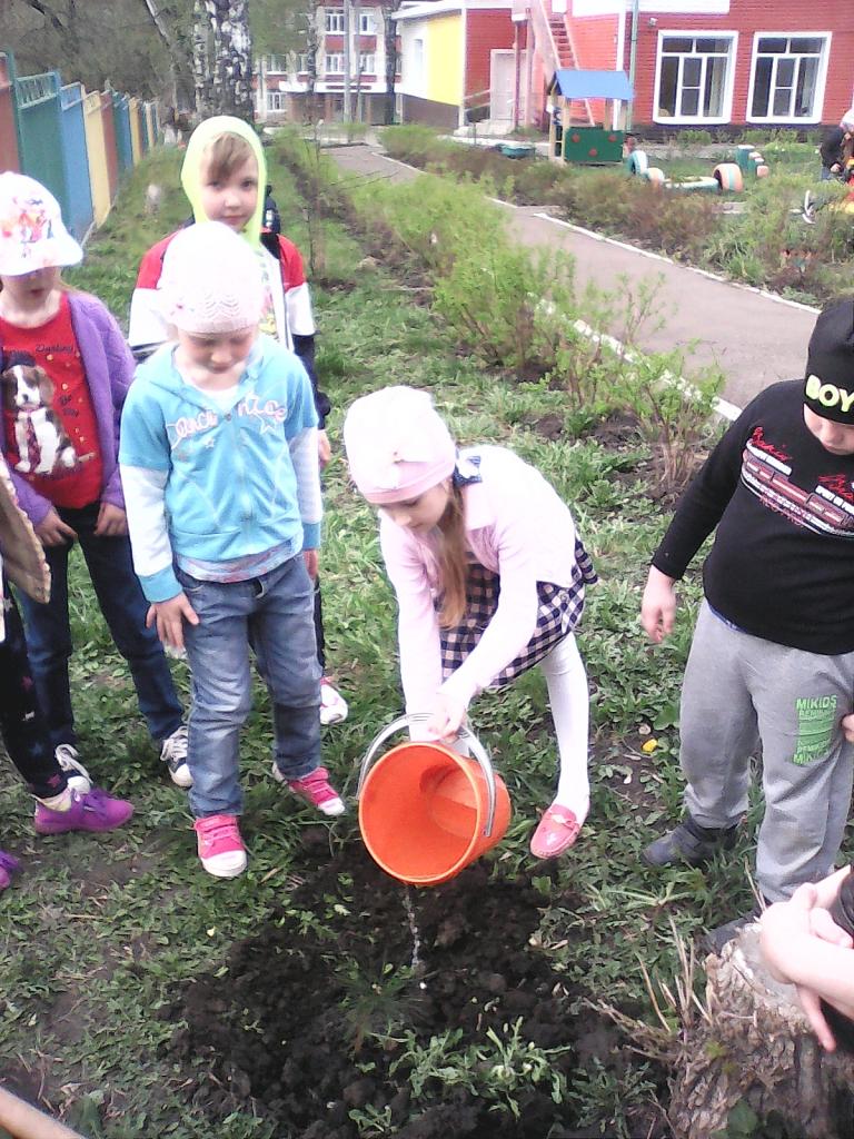 картинки по экологическому воспитанию в школе расположены важнейших частях