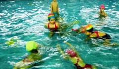 НОД по обучению плаванию. Инструктор по плаванию Честнова Н.Н.